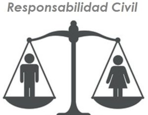 balanza responsabilidad civil segurosnataliaplaza.com