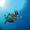 contratar seguro de pesca submarina con arpón